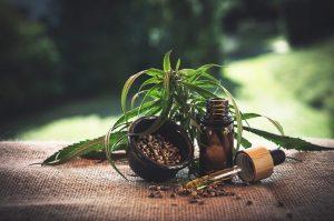 Konopljino olje se uporablja tudi v kuhinji, čeprav so zelo priljubljene še mnoge druge izvedbe